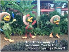 If you're considering staying at #Disney's Coronado Springs Resort, you'll want to check out these photos!