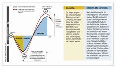 Ernährungswissenschaftlerin Corinne Mäder berichtet über aktuelle Erkenntnisse der optimalen Energiezufuhr nach dem Training. http://www.functional-training-magazin.de/die-richtige-regeneration-ist-ein-erfolgsfaktor/