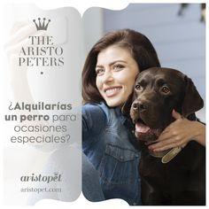Nos hemos quedado de piedra cuando descubrimos «la existencia» de un servicio de alquiler de mascotas. Rent-a-doggy se presenta como el primer servicio online de alquiler de perros en España...¿A quién se le ocurriría crear algo así? Dicho esto, ¡Relajaos y respirad profundo! Se trata de una campaña de concienciación sobre adopción animal ¿Queréis saber exactamente de que trata? Visítanos en ARISTOPET.COM/THE-ARISTOPETERS