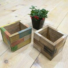 木材で鉢カバーを作りました。絵具でペイントすることでいろいろなデザインに変えることができます。簡単に作れるので何個も作って試してみましょう。 Wood Shop Projects, Projects To Try, Succulents In Containers, Wooden Planters, Flower Boxes, Raised Garden Beds, House In The Woods, Chalk Paint, Diy And Crafts