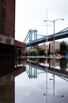 Dumbo after Sandy