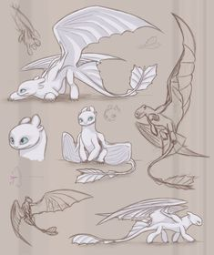 Character design and concept art illustration. How To Train Dragon, How To Train Your, Fantasy Creatures, Mythical Creatures, Cute Drawings, Animal Drawings, Toothless Drawing, How To Draw Toothless, Dragon Sketch