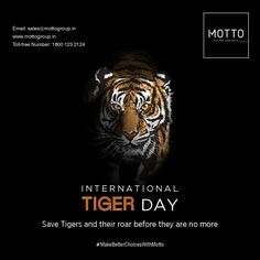 Save Tigers and their roar, before they are no more International Tiger Day..! #Motto #Tiles #mottogroup #Ceramic #FloorTiles #slabtiles #CeramicTiles #CeramicTile #SlabTile #Slab #Tile #Marbles #MarblePlus #InternationalTigerDay #InternationalTigerDay2020 #TigerDay #TigerDay2020 #WorldTigerDay #SaveTigers #Tiger #WildLife International Days, E Day, Social Media Design, Marbles, Ladies Day, Motto, Tigers, Festivals, Wildlife