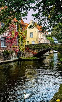 Scenic canal in Bruges, Belgium • photo: SdosRemedios on Flickr