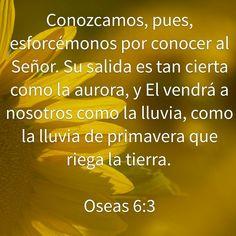 Oseas 6:3