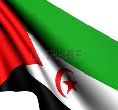 Western Sahara, Flag Vector, Outdoor Decor, Home Decor, Decoration Home, Room Decor, Home Interior Design, Home Decoration, Interior Design