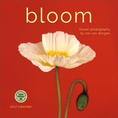 Bloom 2017 Wall Calendar: Flower Photography by Ron Van Dongen. Features insightful quotes by writers such as Oscar Wilde, Emily Dickinson, Ralph Waldo Emerson, and William Shakespeare. Click through to see the most recent edition!