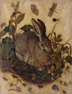 SueOCA: RESEARCH: Durer (1471-1528) and animals in Renaissance art