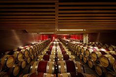 The chai or barrel room at Angelus