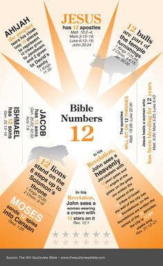 Bible Numbers 12 - where you find the number 12 referenced in Scripture verses.  Spiritual faith, growth and inspiration in Ladies Bible Study - in Women's Ministry.  Informative Chart!