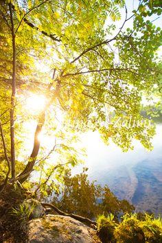 Ann-Kristina Al-Zalimi, sunshine, sunny, by the lake, lake, summer, aurinkoinen, kesä, sommar, järven rannalla, järvi