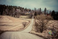 Veitakkalan Dikars on vanha rälssisäteri/kartano jonka päärakennus ja toinen asuirakennus ovat rakennettu ennen vuotta 1850, päärakennukseen on lisätty näköalatorni myöhemmin. Veitakkalan kartano sijaitsee muinaisen Hiidentien varressa, josta on oma kirjoituksensa tässä blogissa. Maantietä reunustava lehtipuukuja on peräisin 1800 luvulta. http://www.salonsydan.fi/Salo/historialliset-kohteet/veitakkalan-kartano/ #salo #visitsalo
