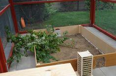 Baudoku: Außengehege für 4 Kaninchen - Seite 8 - Kaninchen