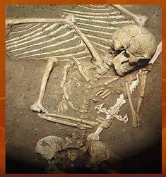 'Archaeological Anomalies 3 ' - Advanced photoshop contest is now closed. Ancient Egyptian Art, Ancient Aliens, Ancient History, Ancient Mysteries, Ancient Artifacts, Unexplained Pictures, Pilou Pilou, Nephilim Giants, Giant Skeleton