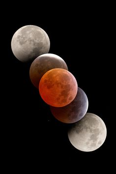 Blood red moon | by Levin Dieterle | Website.