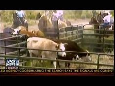 """Fox News Reporting Enemies Of The State - The Sagebrush Rebellion =========================================== **Please Click Below to SUBSCRIBE for More """"..."""