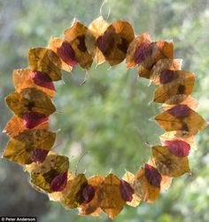 What a beautiful way to preserve all of those autumn leaves that your child…