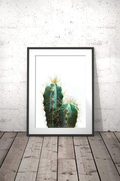 Cactus Plant, Cactus Art, Cacti Print, Cactus Poster, Cactus Photography,  Cactus