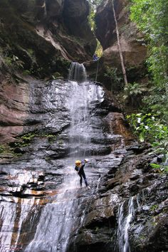 One of the eight adventures in Australia you don't want to miss: abseiling in the Blue Mountains