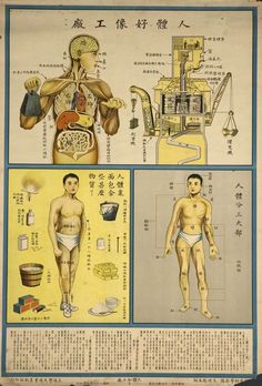 """© US National Library of Medicine 1933: Chinese """"Understanding the human body"""" Public Health Posters"""