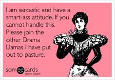 I am sarcastic and have a smart-ass attitude. If you cannot handle this. Please join the other Drama Llamas I have put out to pasture.