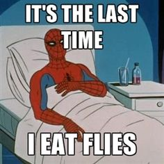 no more flies for me #spiderman #meme #funny