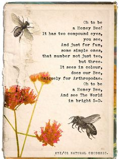 ≗ The Bee's Reverie ≗ Poem by Joanna Tilsley aka QuantumPress on Etsy