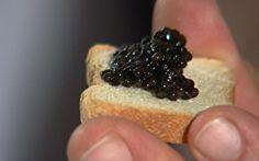 Uruguai é um dos poucos países fora da Rússia a produzir caviar