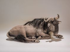 nick mackman: wildebeest sculpture
