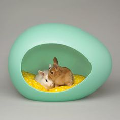 Adorable and stylish pods that will offer your furry friends a safe and nurturing habitat to relax in.
