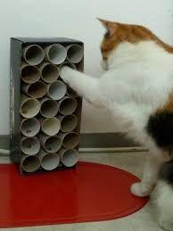 Bildergebnis für katzenspielzeug selber machen