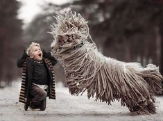 Blonde kid with large dread locked dog that is jumping in joy.