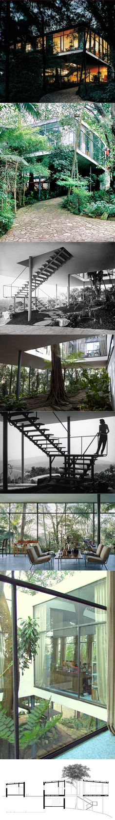 paradise found : architecture : the glass house : lina bo bardi : brazil 1950 Beautiful Architecture, Interior Architecture, Exterior Design, Interior And Exterior, Pavillion, Glass House, Future House, Bungalow, House Design
