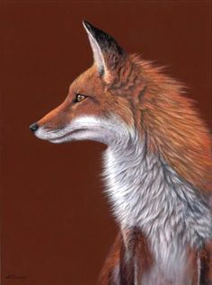 Animals, Pastels paintings & artwork, SAA, Page 12.... FROM THE  PINTEREST BOARD OF Carole Chevrefils, RENARDS.