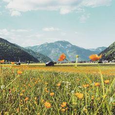 Tipps um Urlaub in Österreich zu buchen Innsbruck, Vineyard, Gadgets, Blog, Outdoor, Tour Operator, Czech Republic, Slovenia, Ski