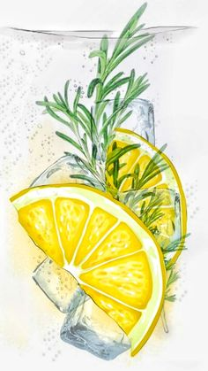 Wallpaper - - Best of Wallpapers for Andriod and ios Fruit Illustration, Watercolor Illustration, Iphone Background Wallpaper, Aesthetic Iphone Wallpaper, Lemon Watercolor, Lemon Art, Fruits Drawing, Watercolor Paintings For Beginners, Fruit Painting