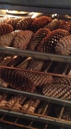 to Clean and Dry Pine Cones for Crafting and Decorating.How to Clean and Dry Pine Cones for Crafting and Decorating. Christmas Projects, Fall Crafts, Holiday Crafts, Christmas Wreaths, Arts And Crafts, Christmas Decorations, Christmas Ornaments, Pinecone Ornaments, Pinecone Christmas Crafts
