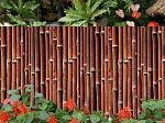 "Mahogany colored bamboo fence panels are constructed using 1"" Tonkin bamboo with a deep-rich mahogany stain that complements the natural colors and tones of bamboo canes. Our mahogany stained fence develops rich reds, blacks, and browns complementary to indoor and outdoor color schemes of a darker hue. Each fence is selected and made from the most durable cane available."
