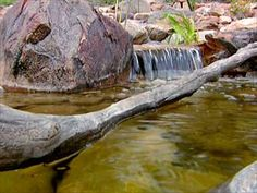 How to Create a Pond and Stream for an Outdoor Waterfall | how-tos | DIY