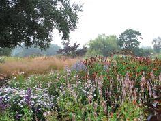 Oudolf.com - Piet Oudolf - Gardens - Public gardens - Pensthorpe - Pensthorpe