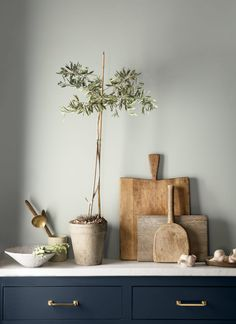 Benjamin Moore's Color of the Year 2019 exudes glamour, beauty and balance. It's supported by Benjamin Moore Color Trends Colores Benjamin Moore, Benjamin Moore Colors, Pale Oak Benjamin Moore, Benjamin Moore Bedroom, Interior Modern, Home Interior, Interior Design, Gray Interior, Kitchens