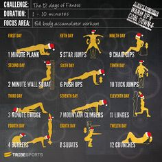 12 Days of Fitness Challenge! I started this 12 Days of Fitness Challenge yesterday. It's a great way to sneak fitness with the busy holiday season. I'm actually doing my 2 minute wall sit as I write. Forma Fitness, Fitness Herausforderungen, Fitness Motivation, Health Fitness, Fitness Workouts, Weight Workouts, Fitness Routines, Workout Exercises, Daily Motivation