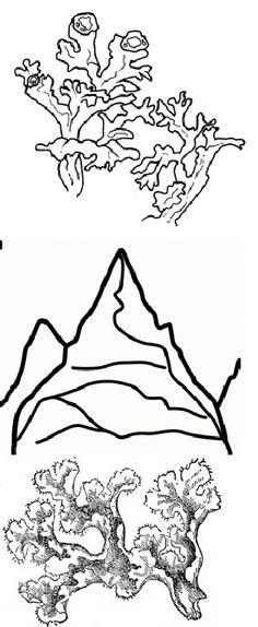 valle d'aosta cartina DA COLORARE | Regioni d'Italia : l ...