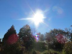 Strahlend blauer Himmel, kein Wölkchen und Sonne pur hinter meinem Büro. Ja wird´s denn schon wieder Frühling? ;-)