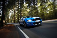 Ford mustang shelby gt500 cars (5616x3744, mustang, shelby, gt500, cars)  via www.allwallpaper.in