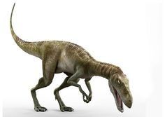 Clear And Distinctive Collectibles Smart Dinosaur Spinosaurus Small Replica 75mm Long Toys & Hobbies