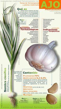 Propiedades medicinales y usos del AJO. Tablero Dieta-online en @Pinterest