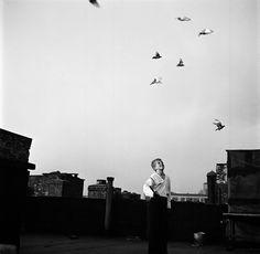 Shoe Shine Boys (Pigeons), 1947.