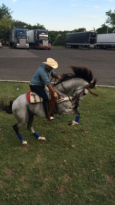 This ain't my first rodeo  Leo Quezada #Featured #Shuttographer #StaffPick #horse #cowboy #hat #buckingbronco #trucks #summer #wrangle #whip #mane