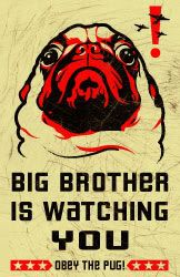Big Brother is watching you!  OBEY THE PUG